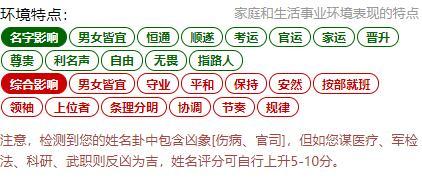 姓名分析系统使用说明及完整报告范例